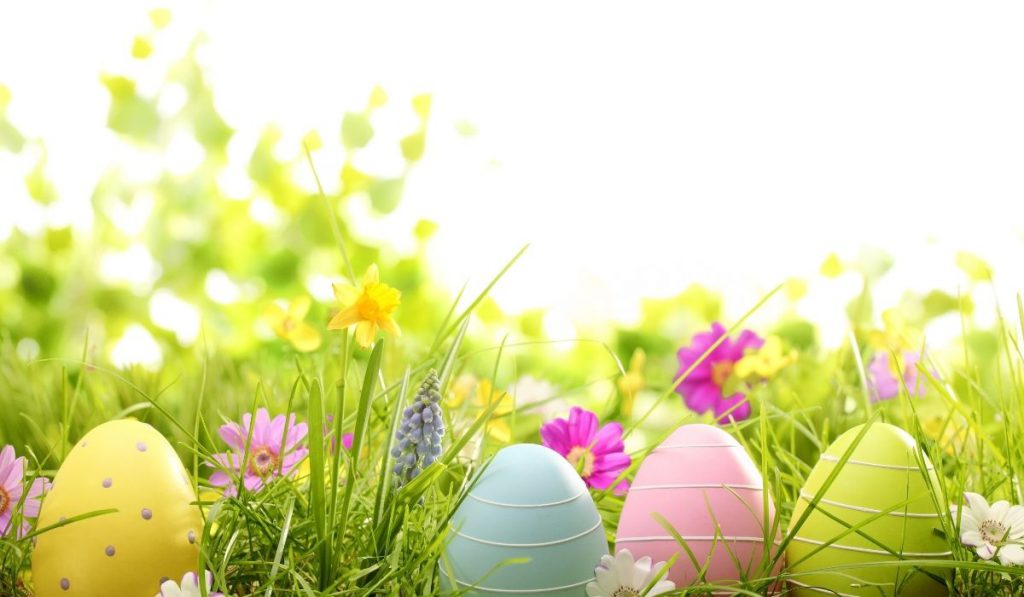 red, blue, pink and green eggs on the grass - Easter day